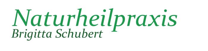 Naturheilpraxis Brigitta Schubert Retina Logo
